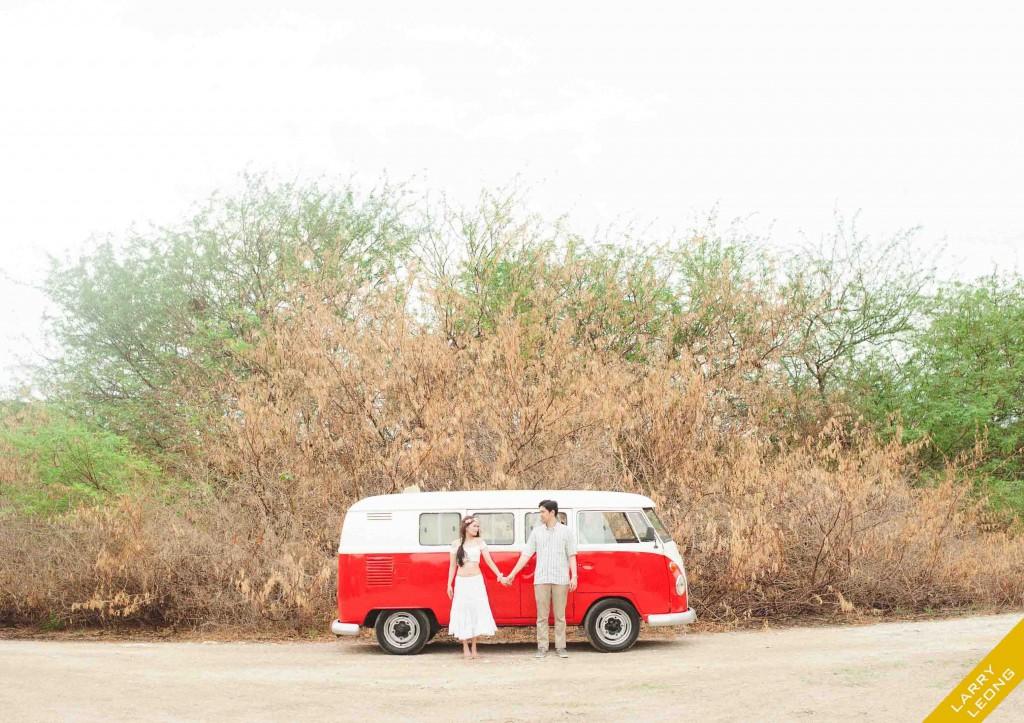 Prenup Combi Van