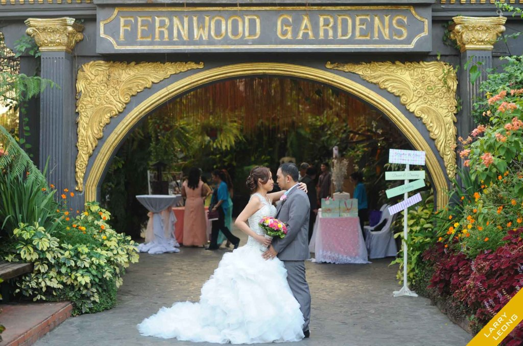 ferwoods_garden