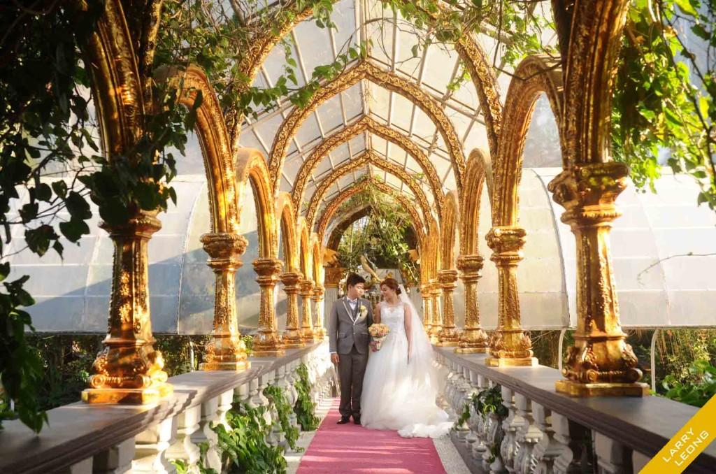 fernbrooks wedding