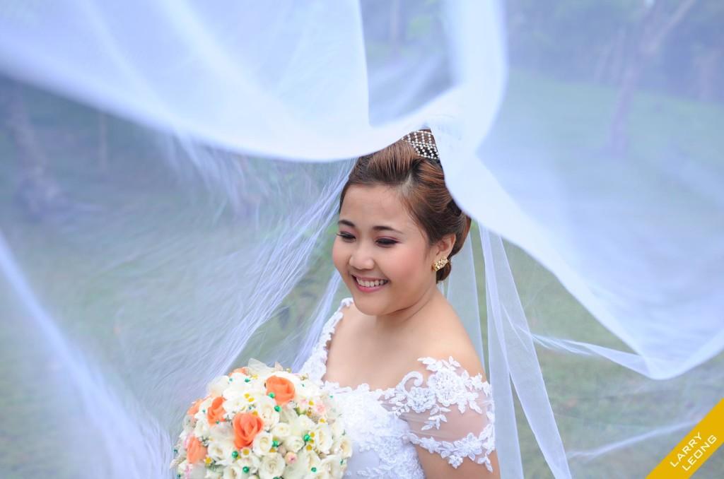 bride-gown