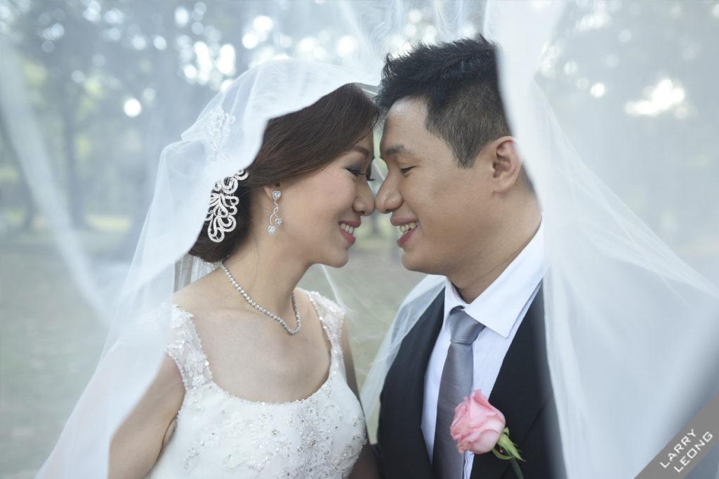 wedding veil lovation